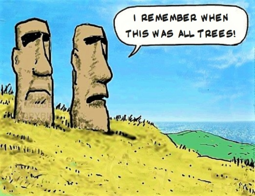 easter island deforestation